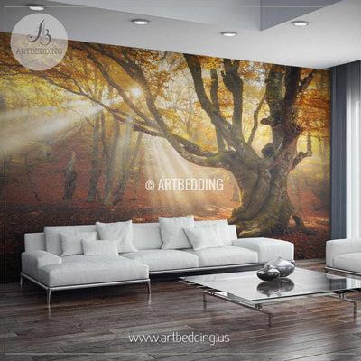 Autumn Forest Magical Old Tree Wall Mural, Photo mural Self Adhesive Peel & Stick, wall mural wall mural