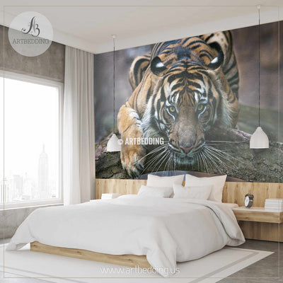 Tiger Gaze Wall Mural, Tiger Self Adhesive Peel & Stick Photo Mural, Beautiful tiger wallpaper wall mural