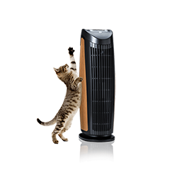 Top 3 Air Purifiers For Pet Dander Amp Allergies