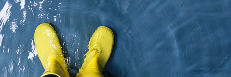 Standing in the Water with a Pair of Yellow Rain Boots on