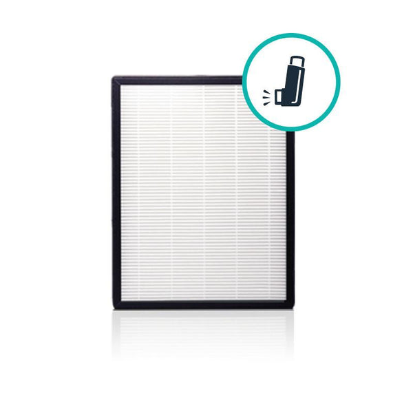 Alen BreatheSmart FLEX HEPA-Silver Replacement Filter