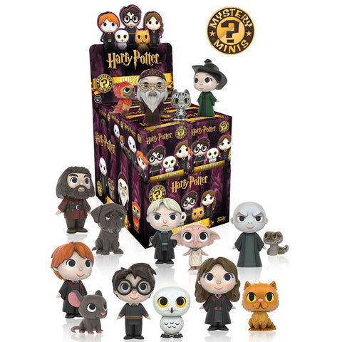 Mystery Minis Blind Box: Harry Potter