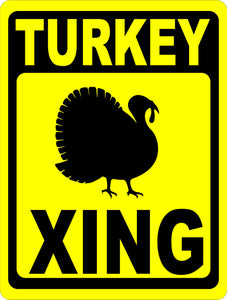 In the spirit of Turkey Day