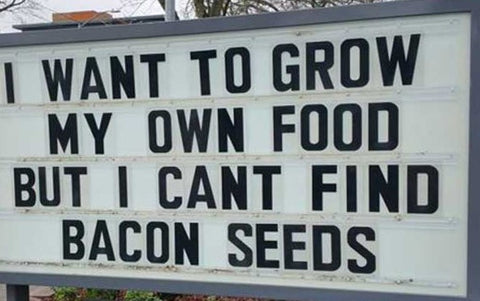 Everybody Loves Bacon Sign