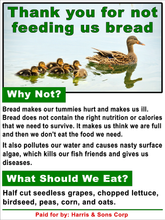 Custom Duck Feeding Rules Sign