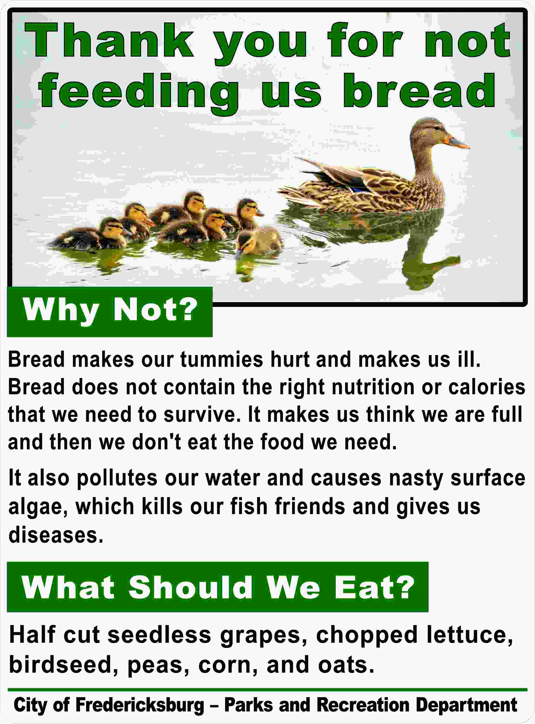 Custom Duck Sign Thank You For Not Feeding Us Bread Signs By