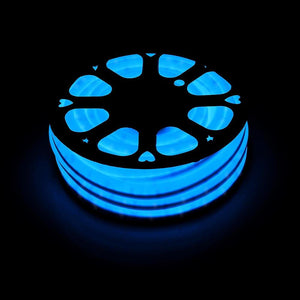 DELight Holiday Decorative Lighting Flex LED Neon Rope Light Blue 50ft