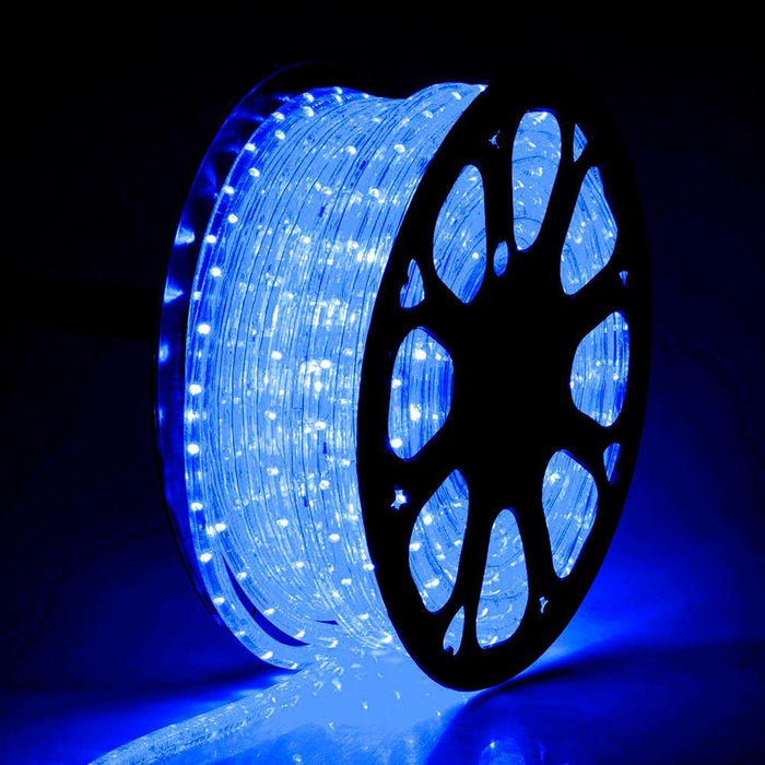 DELight Holiday Lighting LED Rope Light Spool 150ft Blue