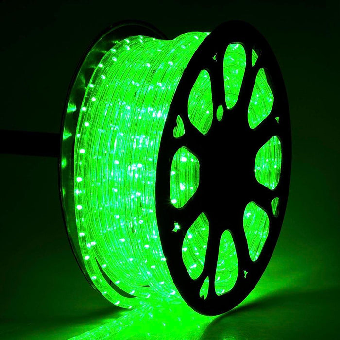 DELight Holiday Lighting LED Rope Light Spool 150ft Green