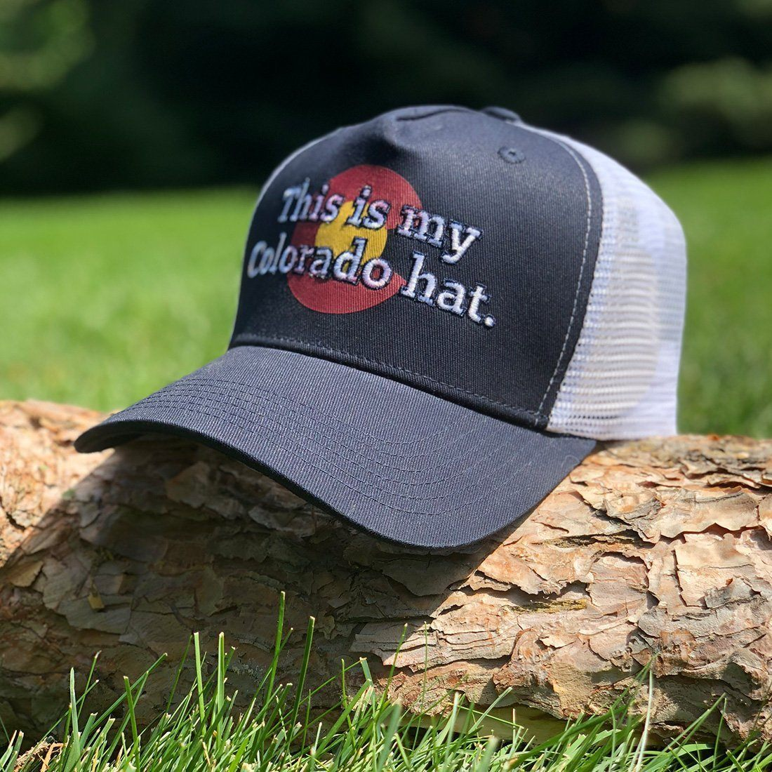 My Colorado Hat - 1876 | The State of Exploration