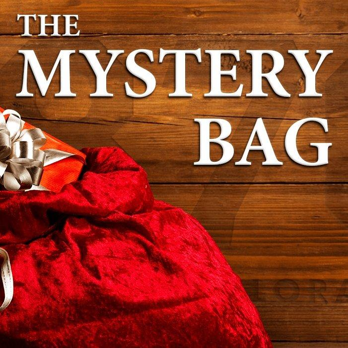 The Mystery Bag! - 1876 | The State of Exploration