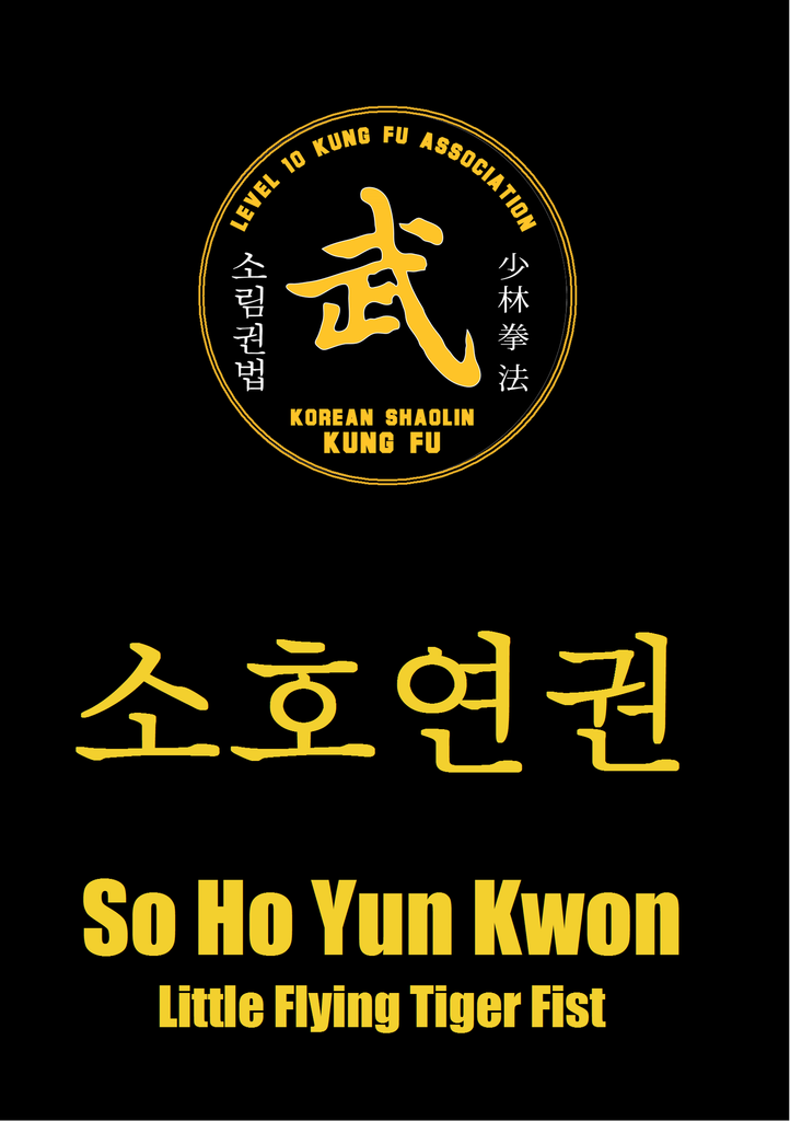 12 So Ho Yun Kwon/Xiao Hu Yan Quan (Little Flying Tiger Fist)