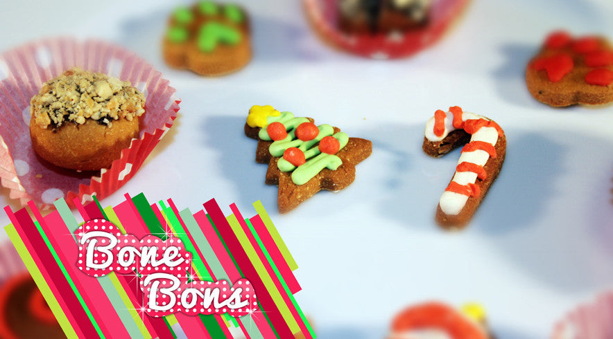 Bone Bons Christmas Sampler