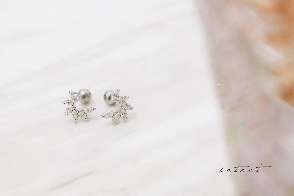 Shining Curve Earrings / ER8171