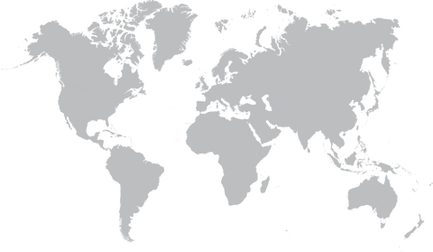 Map of the world grey SWF visual