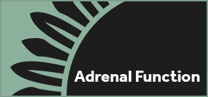 Adrenal Function Profile