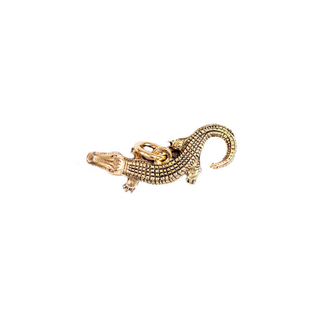 Beaucoup Designs Character Charm, Alligator