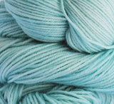 Teal Parakeet - Bouncy Sock Mini Skein