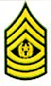 CMD Sergeant Major Insignia Pair