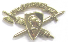 Right Corps Brass Insignia