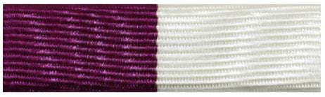 Distinguished Student/ Commandant's Key Ribbon