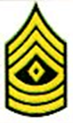First Sergeant Insignia Pair