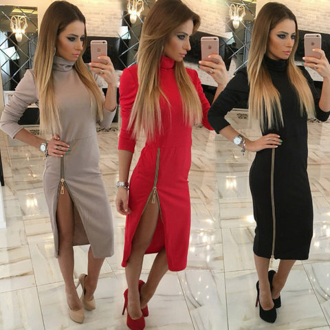 Side Zipper Turtleneck Dress