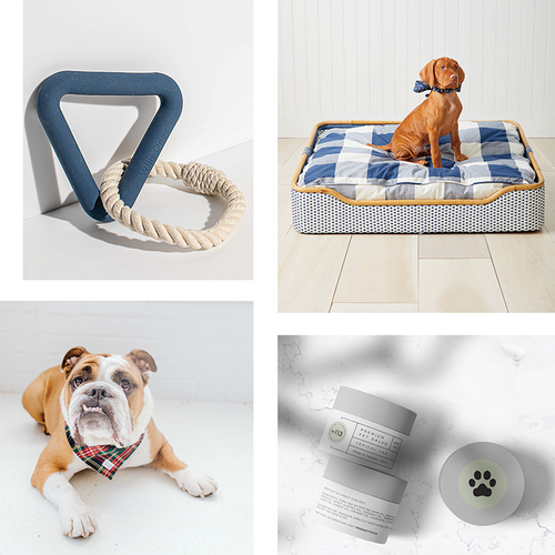 The Ultimate Gift Guide for Dogs & Dog Lovers