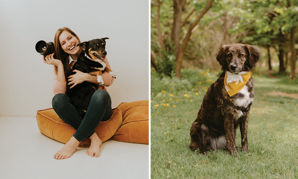Danica sitting with her dog and camera, dog posing for photo in park, dog photography tips from danica olive photography