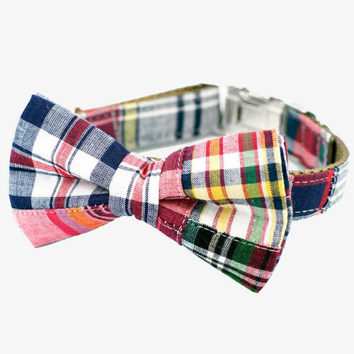 bow tie dog collar madras