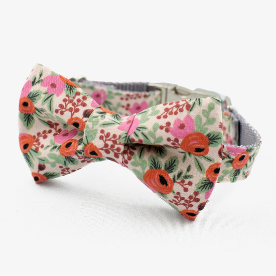 rifle paper co bow tie dog collar