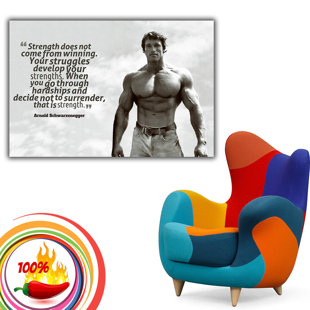 Poster Affiche Arnold Schwarzenegger/'s Motivation The Meaning of Life