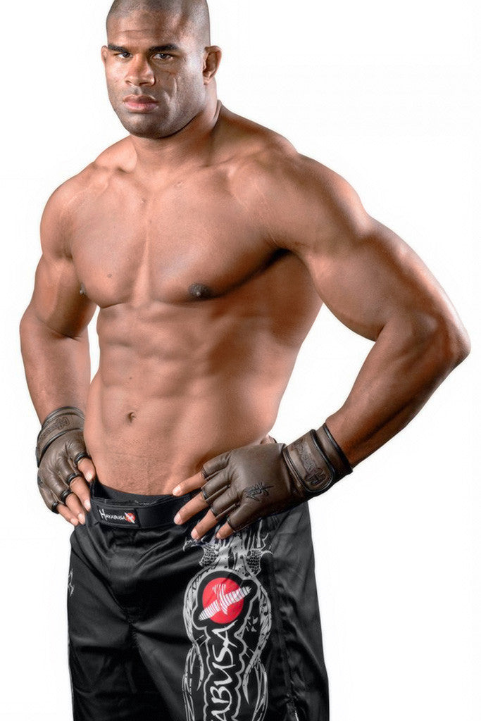 Alistair Overeem Kickboxer MMA Fighter Poster