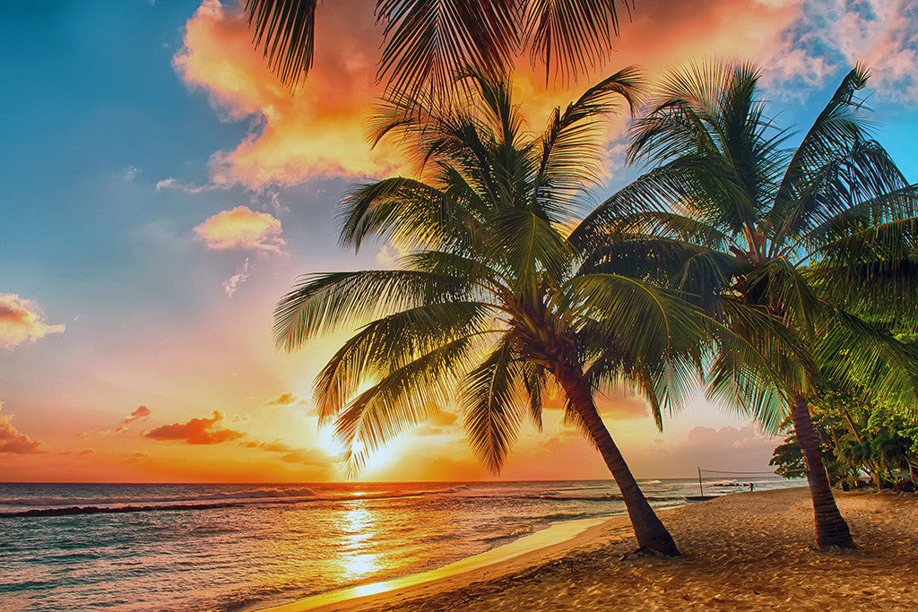 Tropical Sunset Beach Landscape Poster