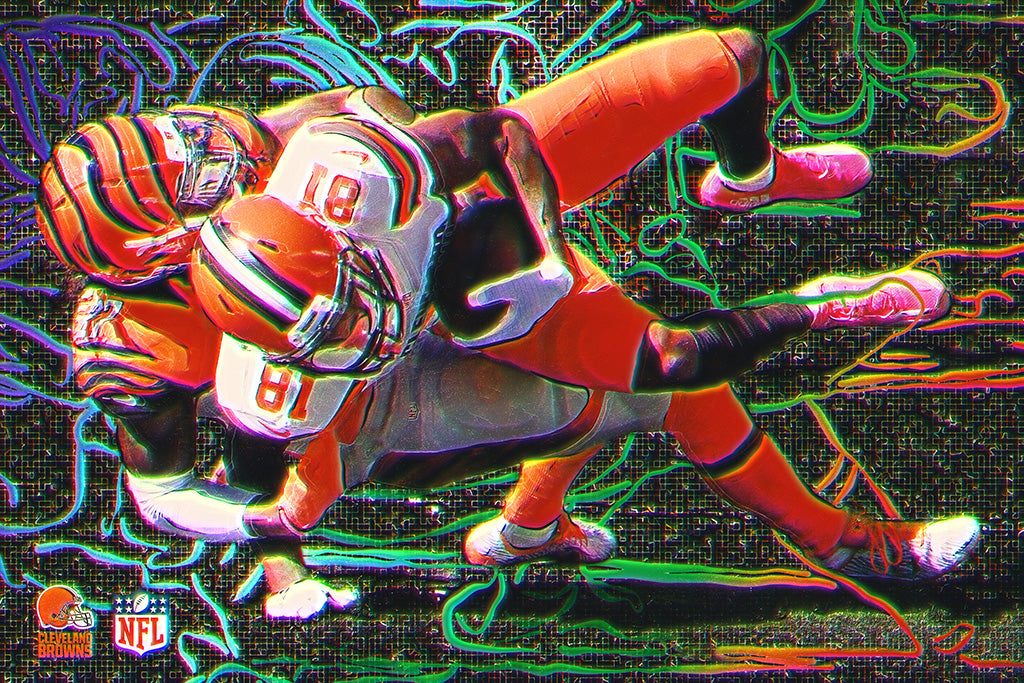 NFL Season 2018 Cleveland Browns Poster