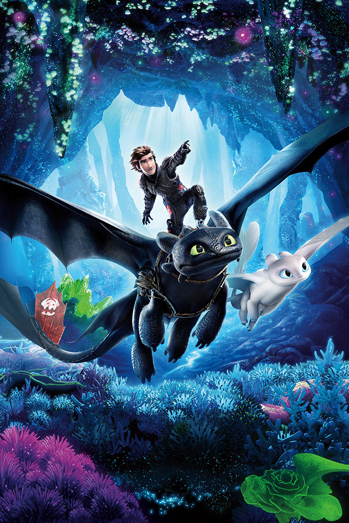 How to Train Your Dragon The Hidden World Movie Poster