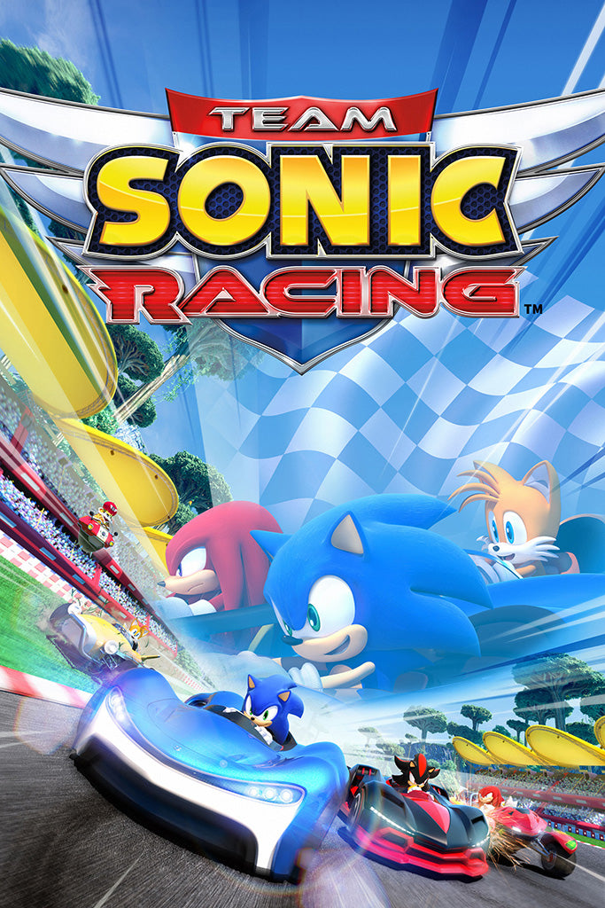 Team Sonic Racing Poster