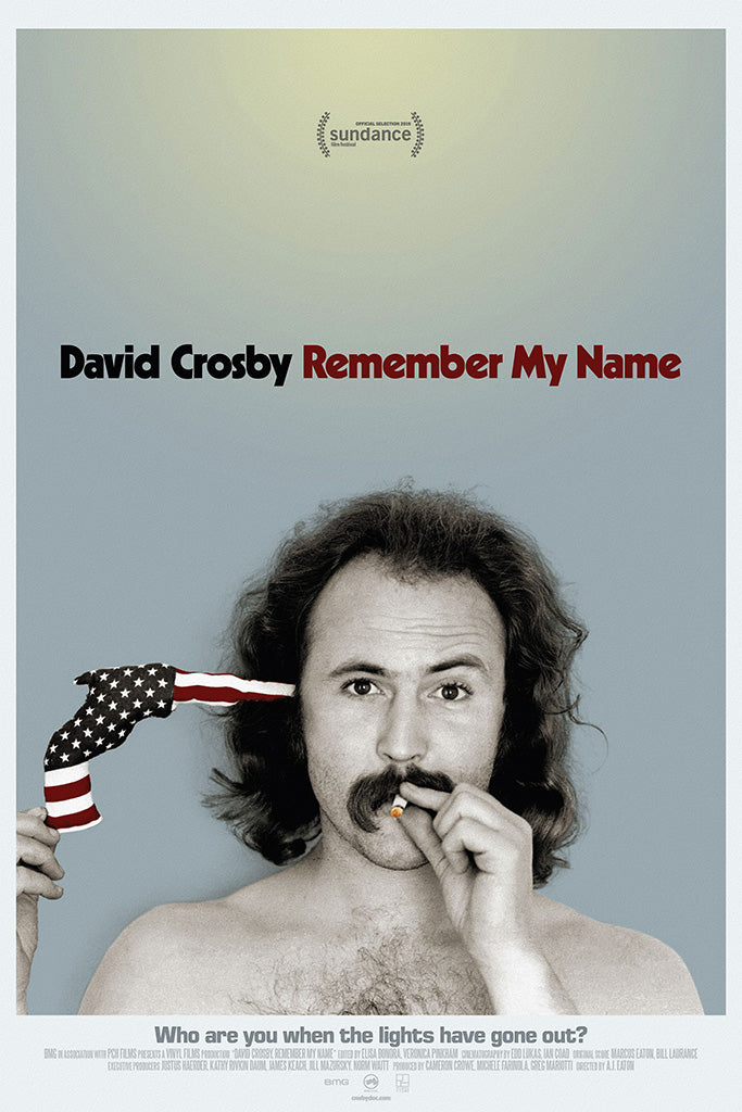 David Crosby Remember My Name Movie Poster