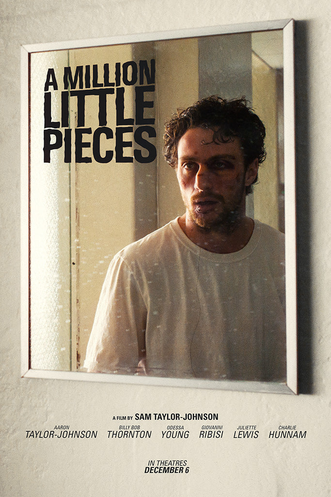 A Million Little Pieces Film Poster