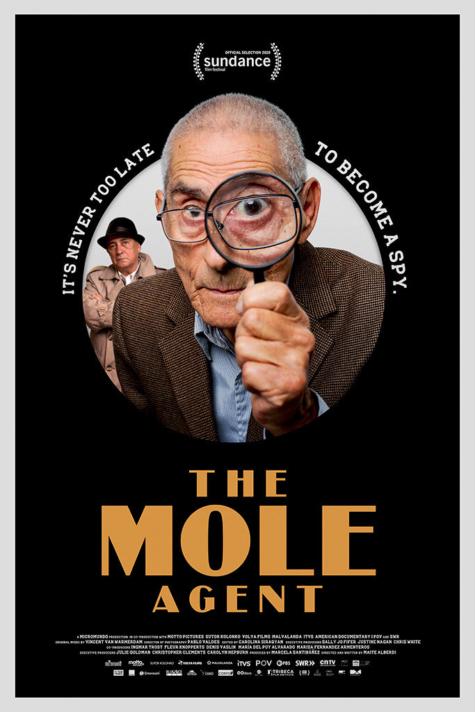 The Mole Agent Movie Poster