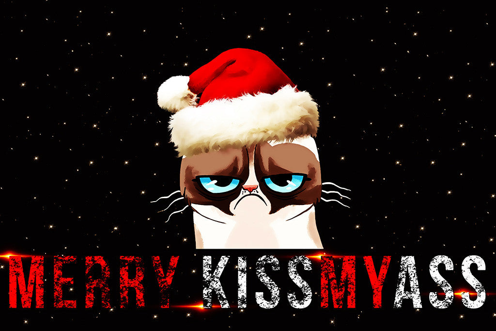 Merry Christmas Funny Images.Grumpy Cat Quotes Merry Christmas Funny Prank Poster