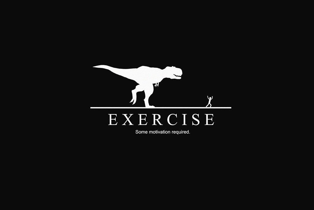 Exercise Funny Humor Sports Motivational Poster