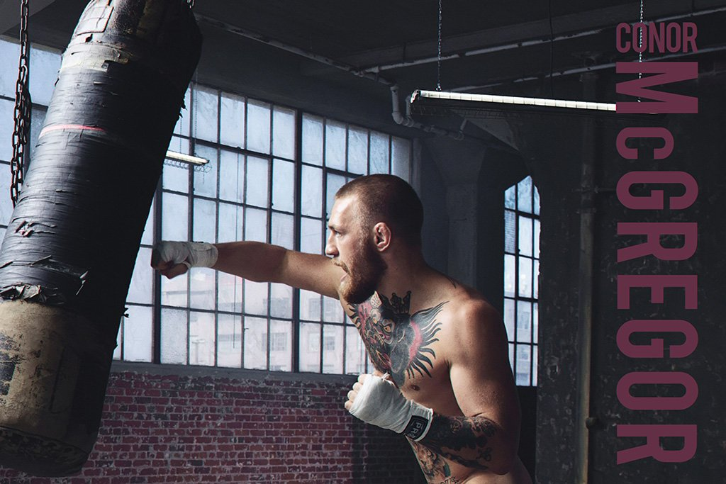 Conor McGregor Punching Bag Poster