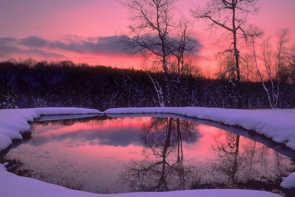 Landscape Nature Lake Forest Winter Sunset Poster