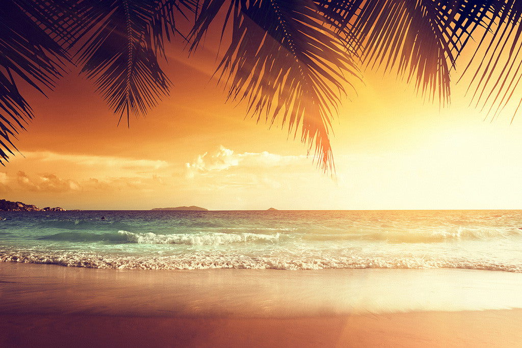 Tropical Beach Palm Trees Ocean Sea Nature Sunset Landscape Poster