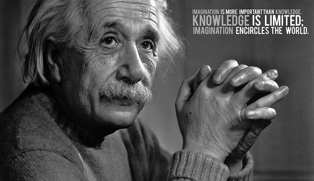 Albert Einstein Motivational Inspirational Poster
