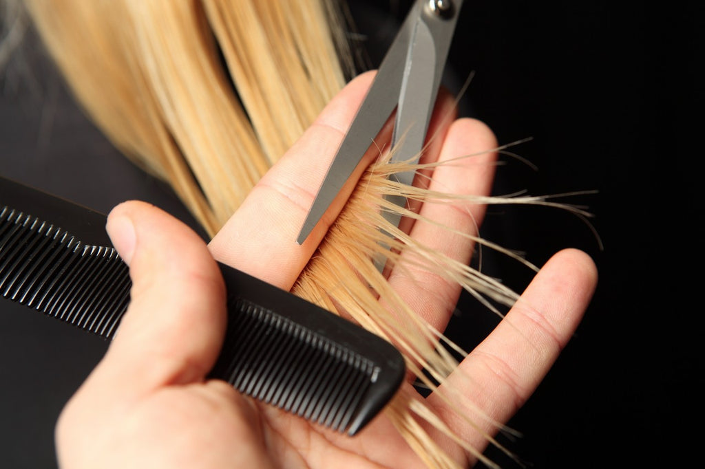 trim damaged hair split ends