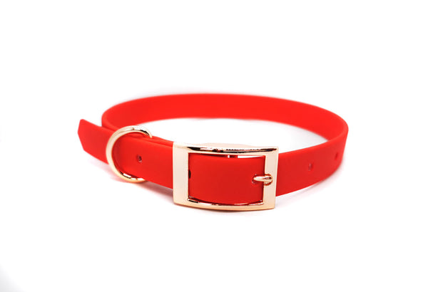 RED BIOTHANE DOG COLLAR - OPTIONAL FITTINGS
