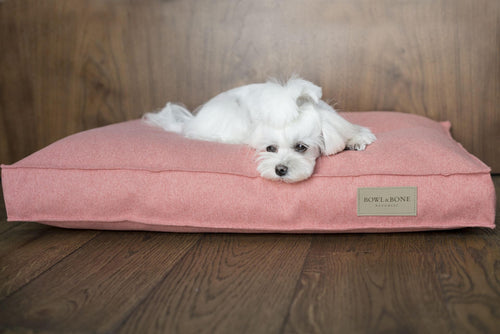 Loft Coral Dog Cushion - Jolly and Bea's - 2