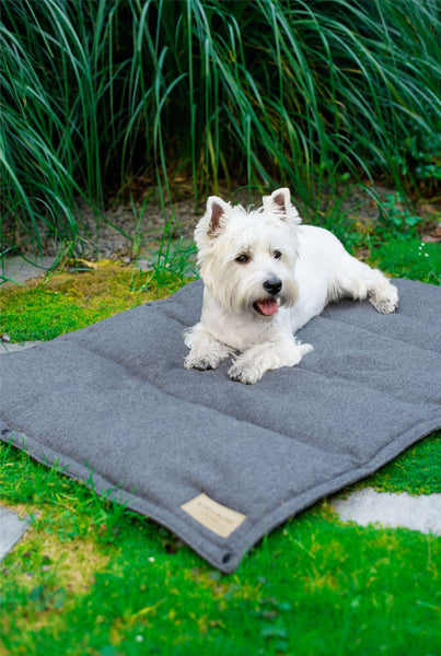 Dog Mat Graphite